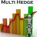 Multi hadge profit 2.0